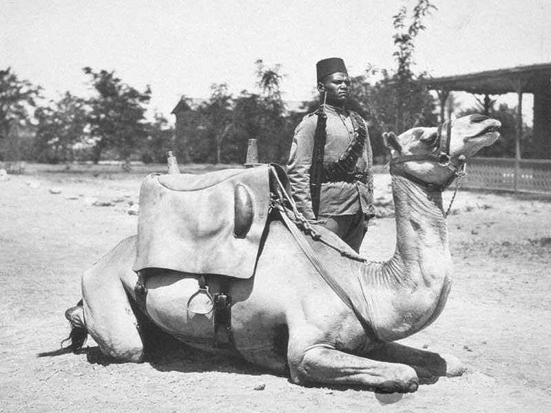 قصة السودان - الثورة المهدية